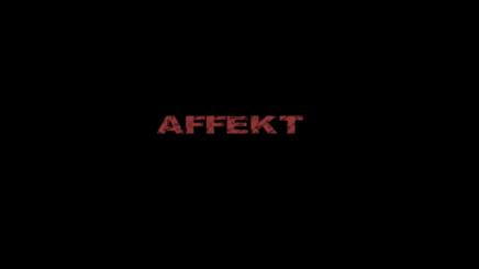 affekt1 (1)